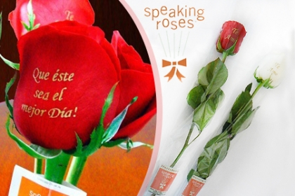 ¡Rosas para Regalar! Paga RD$140 en vez de RD$375 por Rosa Importada en Celofán con una frase Impresa en Floristería Speaking Roses.