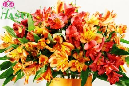 Â¡Sorprendel@! Paga RD$160 en vez de RD$560 por Bouquet de Alstroemerias en Flores Hasu.