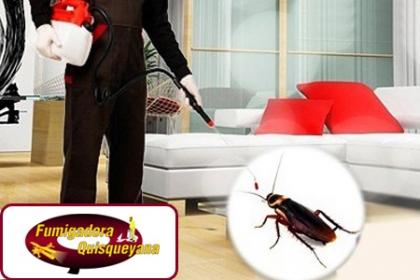 ¡No más Insectos Molestosos! Paga RD$750 en vez de RD$2,250 por Servicio de fumigación tanto para casas como para tu apartamento hasta 200 mts en Fumigadora Quisqueyana.